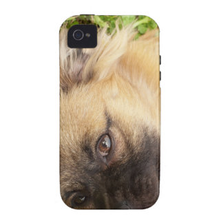 Doggy style iPhone 4/4S cases