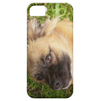 Doggy style iPhone 5 case