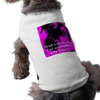 Doggy T Pet Clothes