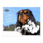 Doggy - winter latest fashion trend postcard