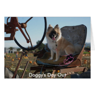 Doggy's Day Out Card