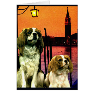 """Doggys in Venice"" Card"