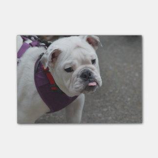 Dogo adorable post-it nota