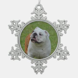 Dogo Adornos