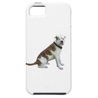 Dogo alfa de la sangre azul (a) iPhone 5 cárcasas