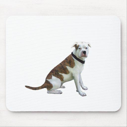 Dogo alfa de la sangre azul (a) tapetes de ratones