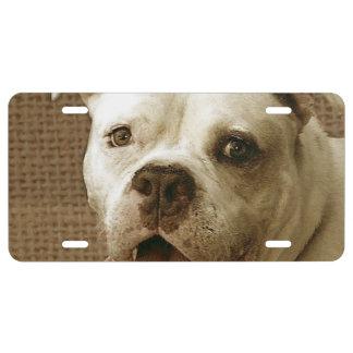 Dogo americano placa de matrícula