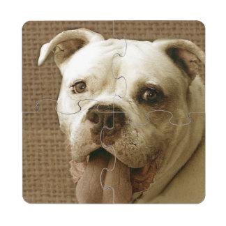 Dogo americano posavasos de puzzle