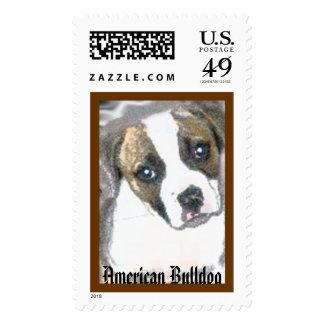 Dogo americano sello
