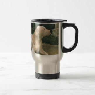dogo argentino laying.png 15 oz stainless steel travel mug