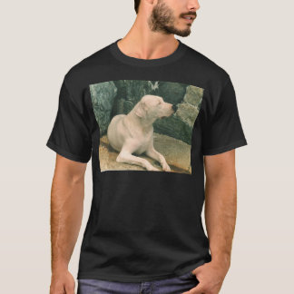 dogo argentino laying.png T-Shirt