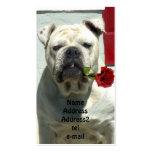 Dogo blanco con la tarjeta de visita color de rosa