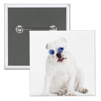 Dogo blanco con las sombras teñidas azul pin cuadrado