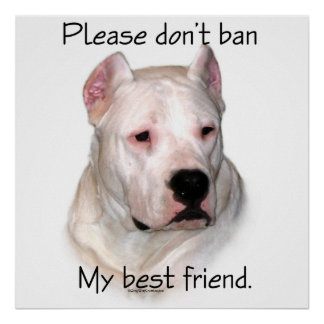 Dogo BSL - Please don't ban my best friend poster