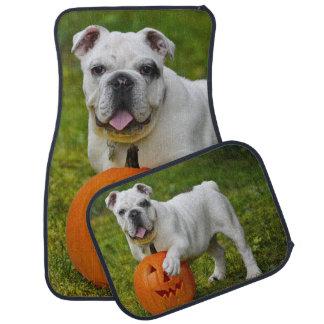 Dogo de Halloween Alfombrilla De Auto