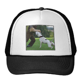 Dogo del americano de Schutzhund Gorros Bordados