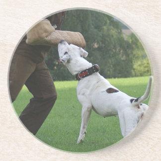 Dogo del americano de Schutzhund Posavaso Para Bebida