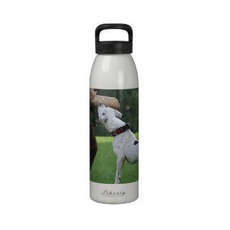 Dogo del americano de Schutzhund Botella De Agua