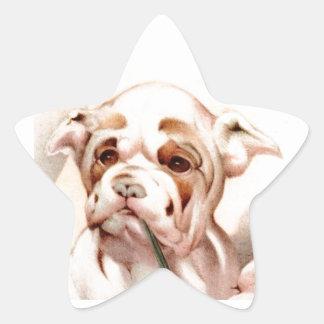 ¡Dogo del bebé - LINDO ESTUPENDO! Pegatina En Forma De Estrella