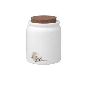 Dogo del blanco y del moreno plato para caramelo