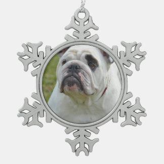 Dogo dulce adorno