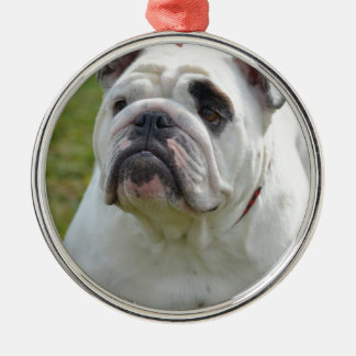 Dogo dulce ornamento para arbol de navidad