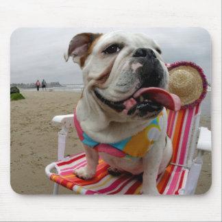 Dogo en la playa alfombrillas de ratones