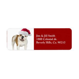 Dogo en navidad del gorra de Santa Etiqueta De Remite