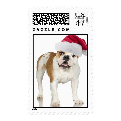 Dogo en navidad del gorra de Santa Sello