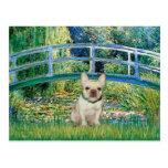Dogo francés 1 - puente tarjetas postales