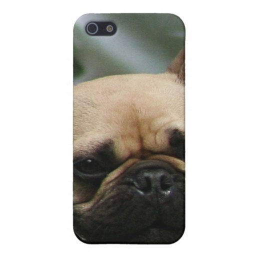 Dogo francés 4 iPhone 5 carcasa