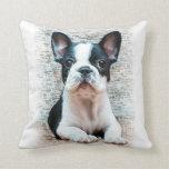 Dogo francés almohadas