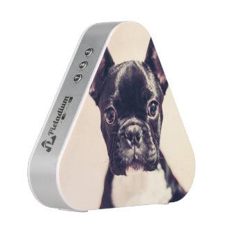 Dogo francés altavoz bluetooth