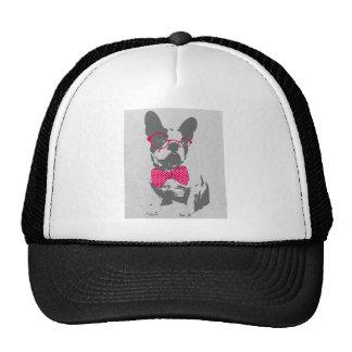 Dogo francés animal del vintage de moda divertido gorras de camionero