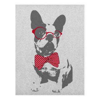 Dogo francés animal del vintage de moda divertido postal