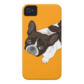 Dogo francés Bailey iPhone 4 Carcasas