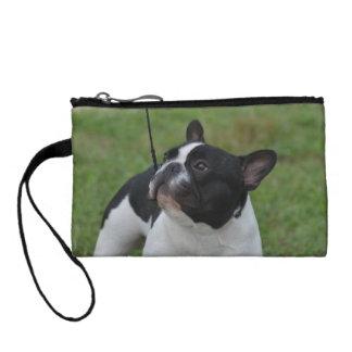 Dogo francés blanco y negro