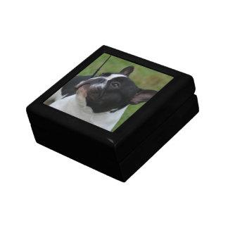 Dogo francés blanco y negro caja de joyas