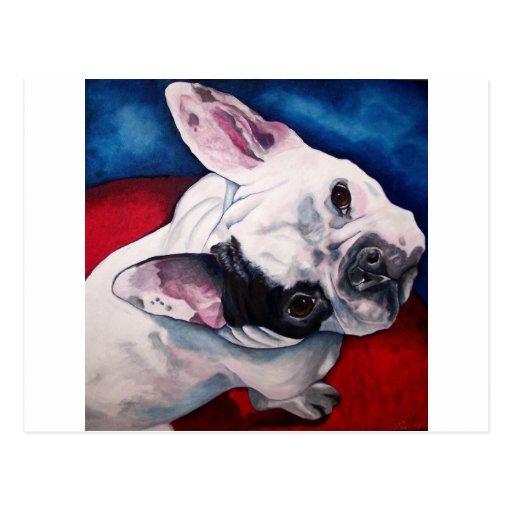 Dogo francés, blanco y negro postal
