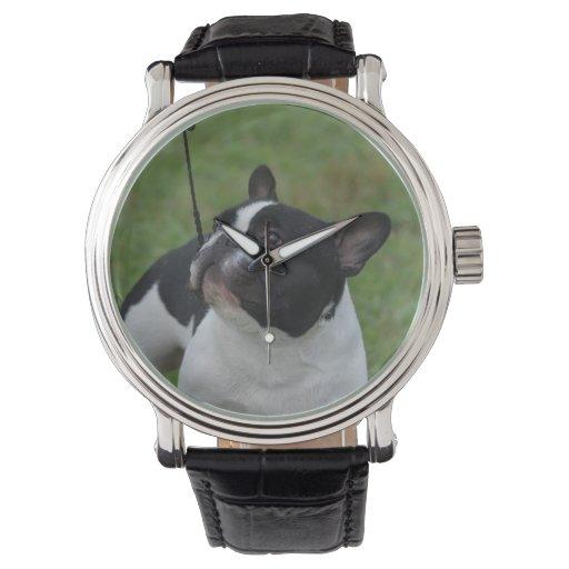 Dogo francés blanco y negro relojes de pulsera