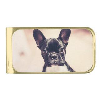 Dogo francés clip para billetes dorado