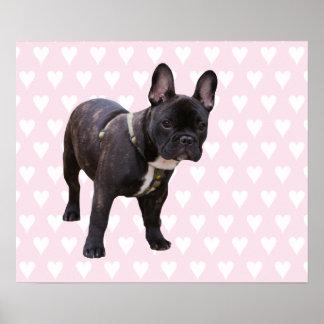 Dogo francés con el poster rosado y blanco de los