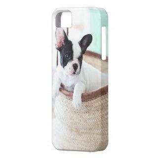 Dogo francés del caso de Iphone 5 iPhone 5 Case-Mate Coberturas