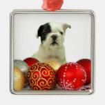 Dogo francés del navidad ornamente de reyes