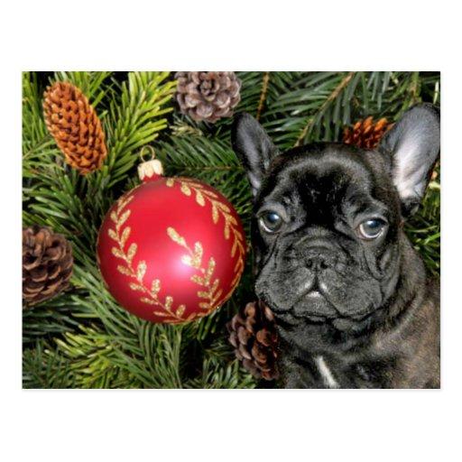 Dogo francés del navidad postal