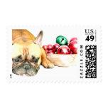 Dogo francés del navidad sellos postales