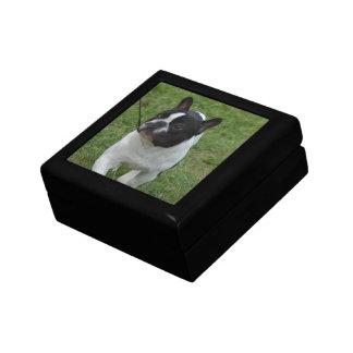 Dogo francés dulce caja de recuerdo