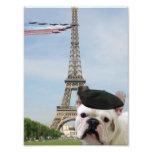 Dogo francés en París Fotografias