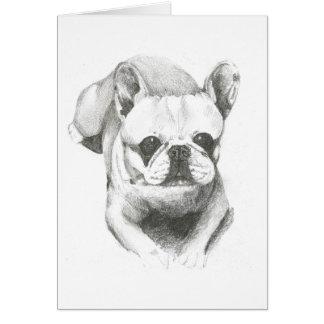 Dogo francés en tarjeta en blanco
