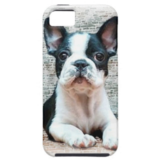 Dogo francés iPhone 5 Case-Mate protector